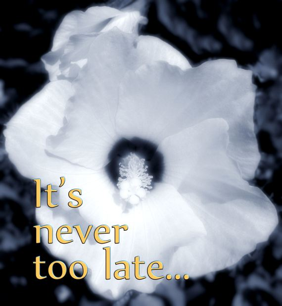 Never Too Late 1