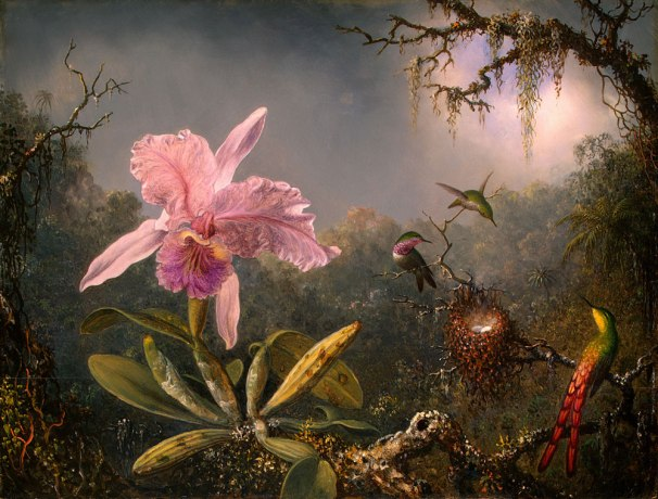 Martin_Johnson_Heade-Cattleya_Orchid_and_Three_Brazilian_Hummingbirds